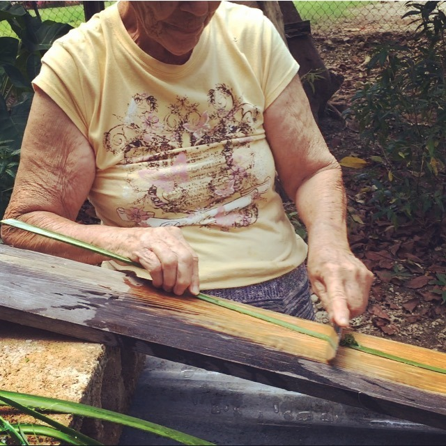 Sra, Esmeralda Morales & Eustaquio Alers are one of the few artisans that still harvest/extract/process Maguey fiber and weave Hammocks with it. Esmeralda was kind to walk me through the entire proces